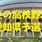 高校野球愛知県予選地方大会