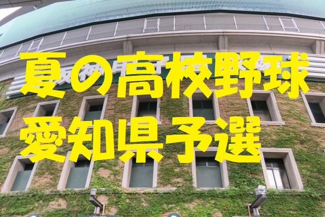 愛知 県 高校 野球 2019 夏