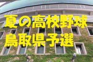 高校野球鳥取県予選地方大会