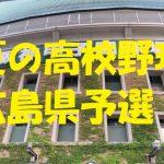 高校野球広島県予選地方大会