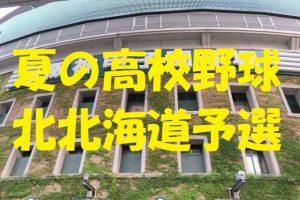 高校野球北北海道予選地方大会