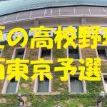 高校野球西東京予選地方大会
