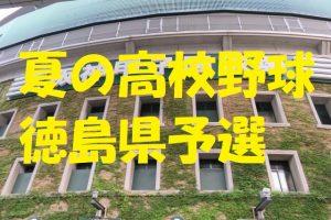 高校野球徳島県予選地方大会
