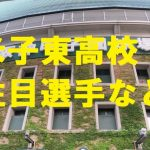 米子東高校野球部の注目選手など・鳥取県